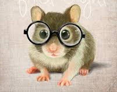 Mouse With Glasses - eye doctor - Round Rock, TX